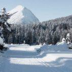 Seefeld-Schnee-Winterwandern