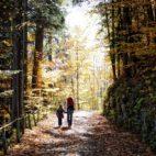 Urlaub im Herbst in Seefeld