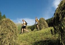 Wandern und Bewegung durch die Alpen
