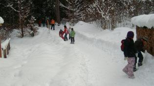 winterwandern_header