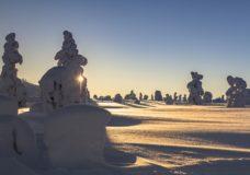Schneelandschaft - Winterurlaub Tirol