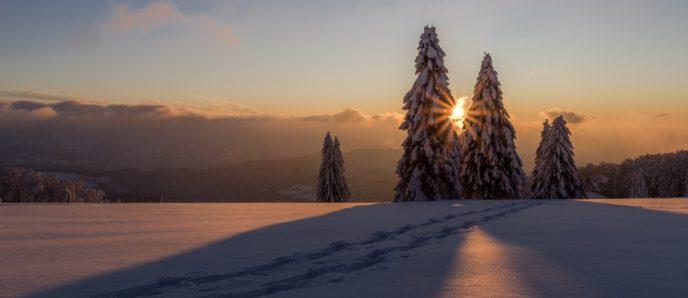 Winterlandschaft - Urlaub in Tirol